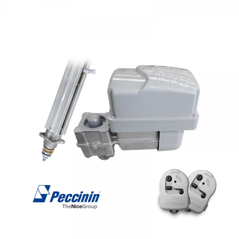 PECCININ KIT B.V. 1.75M 4010F* FLASH 220V V4